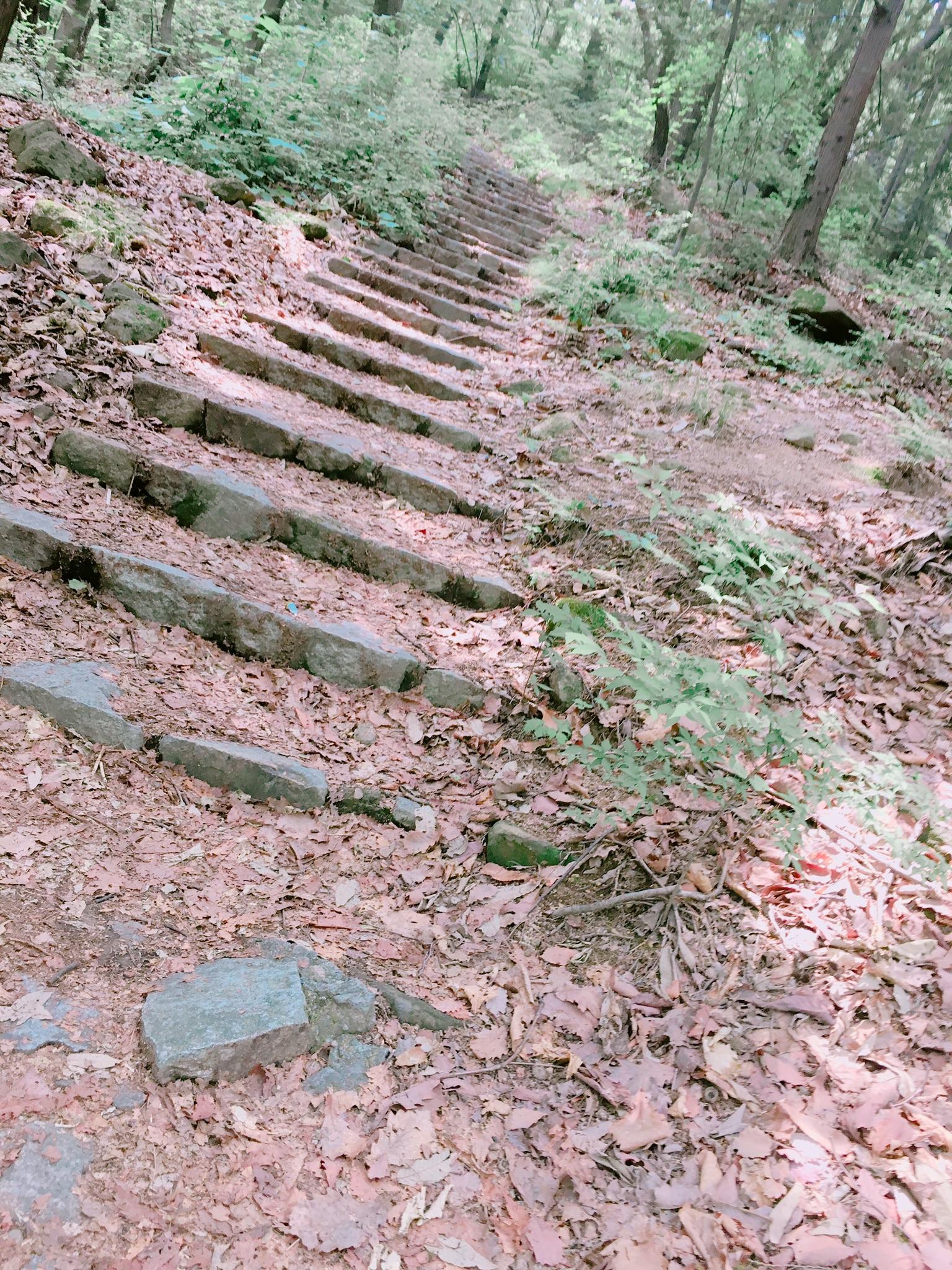 階段フォト